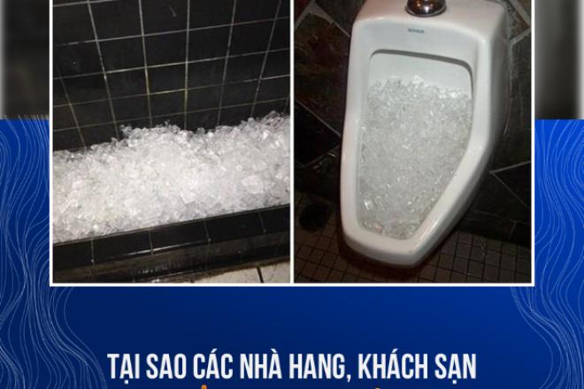 tai-sao-cac-nha-hang-khach-san-thuong-do-da-vien-vao-bo-ve-sinh.png